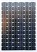 LS105 - 100 Watt - 12V